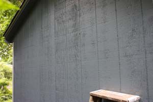 photo of T1-11 plywood house siding