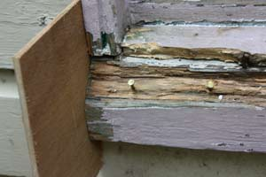 Wood Filler Plywood ~ How to repair rotted wood trim molding do it yourself