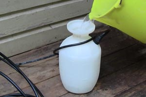 photo filling a pressure sprayer with oxygen bleach